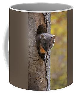 131114p020 Coffee Mug
