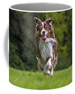 140420p079 Coffee Mug
