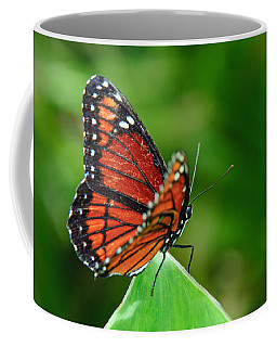 Coffee Mug featuring the photograph Butterfly by Tam Ryan