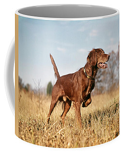 1960s Irish Setter Hunting Dog On Point Coffee Mug