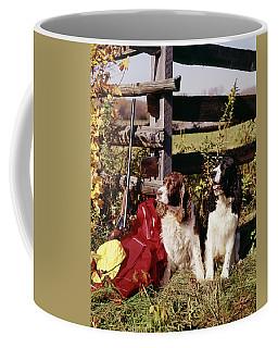 1960s Two Springer Spaniel Hunting Dogs Coffee Mug