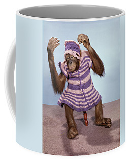 1960s Young Orangutan In Knit Dress Coffee Mug