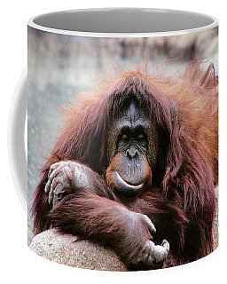 1980s Orangutan Pongo Pygmaeus Indonesia Coffee Mug