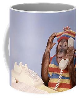 1980s Orangutan Pongo Pygmaeus Coffee Mug