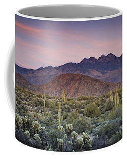 A Desert Sunset  Coffee Mug