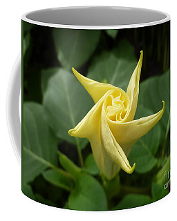 A Star Is Born 001 Coffee Mug