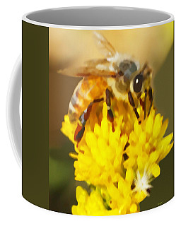 Bee On A Yellow Flower Coffee Mug by Marian Cates