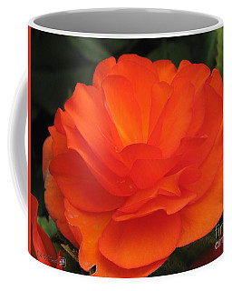 Coffee Mug featuring the photograph Begonia Named Nonstop Apricot by J McCombie