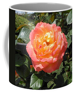 Beijing Rose  Coffee Mug by Kay Gilley