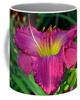 Coffee Mug featuring the photograph Bela Lugosi Daylily by Suzanne Stout