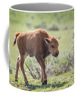 Coffee Mug featuring the photograph Bison Calf by Michael Chatt