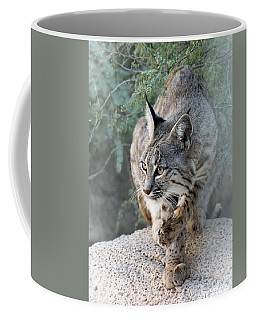 I Was Grooming Coffee Mug