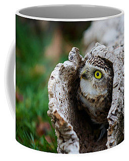 Coffee Mug featuring the photograph Burrowing Owl  by Nick  Biemans