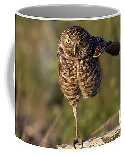 Burrowing Owl Photograph Coffee Mug