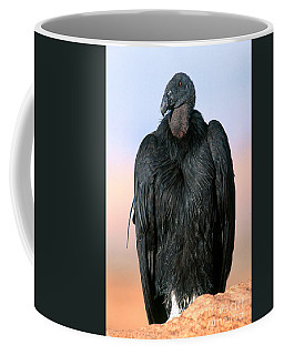 California Condor Coffee Mug