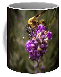 Carpenter Bee On A Lavender Spike Coffee Mug