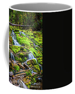 Cascading Waterfall Coffee Mug by Elena Elisseeva