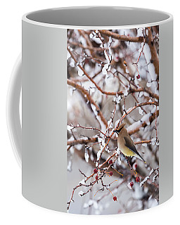 Coffee Mug featuring the photograph Cedar Waxwing by Michael Chatt