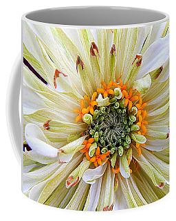 Chrysanthemum Fall In New Orleans Louisiana Coffee Mug by Michael Hoard