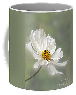 Cosmos Flower In White Coffee Mug