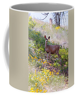 Coffee Mug featuring the photograph Deer In Wildflowers by Athena Mckinzie