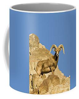 Desert Bighorn Sheep Ram Coffee Mug