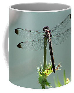 Coffee Mug featuring the photograph Dragonfly by John Freidenberg