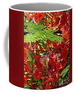 Coffee Mug featuring the photograph Flamboyan by Lilliana Mendez