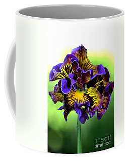 Frilly Pansy Coffee Mug by Joy Watson