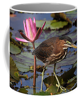Green Heron Photo Coffee Mug