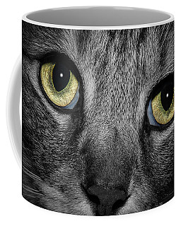 In A Cats Eye Coffee Mug