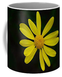 Coffee Mug featuring the photograph Isolated Daisy by Debra Martz