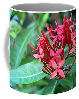 Jamaican Red Coffee Mug