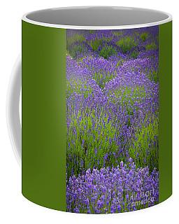 Lavender Study Coffee Mug