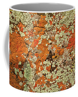Coffee Mug featuring the photograph Lichen Abstract by Mae Wertz