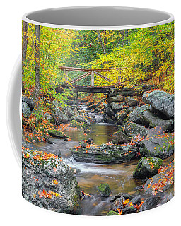 Coffee Mug featuring the photograph Macedonia Brook by Bill Wakeley