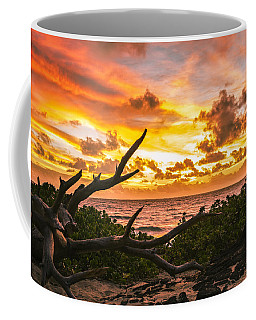 Makapuu Sunrise 4 Coffee Mug by Leigh Anne Meeks