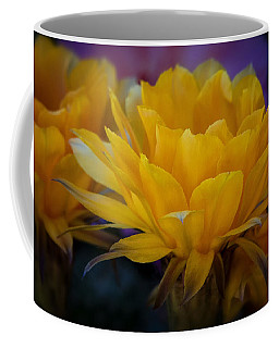 Orange Cactus Flowers  Coffee Mug