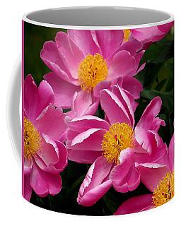 Pink Petals Coffee Mug by Eunice Miller