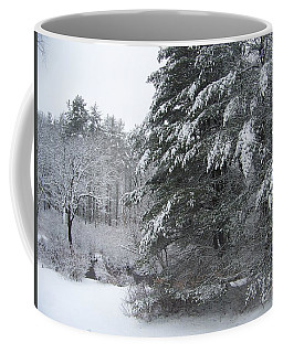 Coffee Mug featuring the photograph Powdered Sugar by Eunice Miller