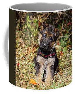 Pretty Puppy Coffee Mug by Sandy Keeton
