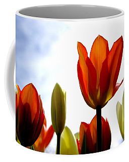 Coffee Mug featuring the photograph Reaching For The Sun by Marilyn Wilson