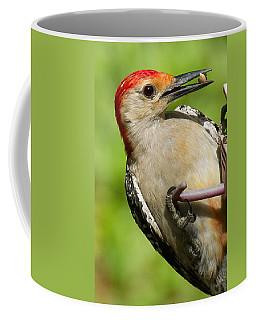 Red Bellied Woodpecker Coffee Mug