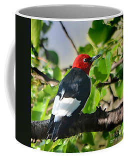 Coffee Mug featuring the photograph Redheads Have More Fun by Nava Thompson