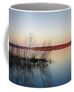 Reflections On Lake Jackson Tallahassee Coffee Mug by Paul  Wilford