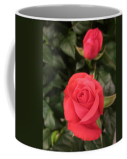 Roses In Red Coffee Mug