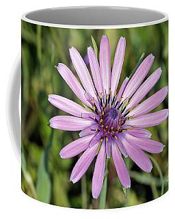 Salsify Flower Coffee Mug