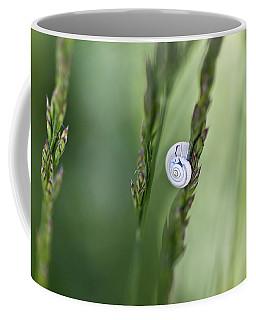 Snail On Grass Coffee Mug