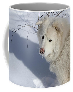 Coffee Mug featuring the photograph Snowy Nose by Fiona Kennard