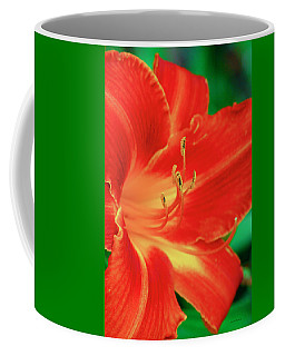 Red, Orange And Yellow Lily Coffee Mug